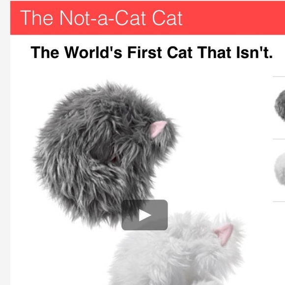 FREE WITH PURCHASE The worlds first cat that isn't